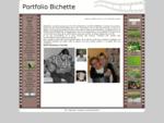 Portfolio Bichette