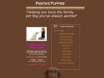 Sydney39;s leading pet dog training, walking and pet sitting company
