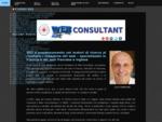 SEO francese inglese italiano, posizionamento siti web Francia