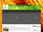 Środki Ochrony Roślin, Nawozy, Nasiona - ProCam