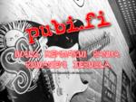 pubi. fi