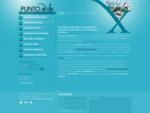 Puntoexe Informatica - Assistenza Informatica Web Agency