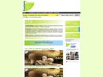 Quadrante Natural - Micologia e Ambiente, Lda. - Cursos de cogumelos e sobre temas ambientai