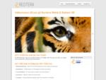 Recitera webb och reklam