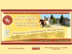 < AZIENDA AGRICOLA CODAZZI E MARONI allevamento cavalli di razza Appaloosa, American Quarter Horse>