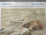 BACKWARD - Realizzazione siti internet, web, sviluppo grafico - Savona