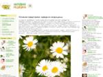 Справочник по болезням | Детская клиника доктора Загера