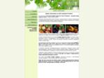 РОСФРУТ - поставки фруктов и овощей оптом в Санкт-Петербурге | овощи фрукты оптом | овощи фрукты д