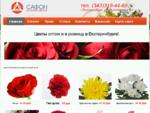 Магазин цветов Сафон - цветы оптом и в розницу в Екатеринбурге