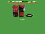 SAVATE | FRANCOSKI BOKS | KIKBOKS | K1 | TAJSKI BOKS | MMA | SAMOOBRAMBA | KARATE | TAEKWOND