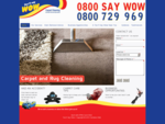 You'll Say Wow | Professional Carpet and Tile Cleaning Services