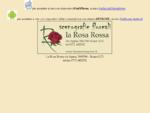 la rosa rossa scauri. scenografie floreali