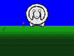 Willkommen beim Schaf