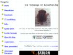 Die Homepage von Sebastian Zappe