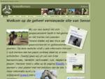 Sense4horses, Rusthuis en opleidingscentrum voor uw paard of pony