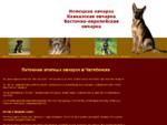 Питомник собак Челябинск. Немецкая, кавказская, восточно-европейская овчарка в Челябинске, прода