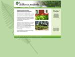 Solhemin puutarha - luonnonkasvit, saniaiset, alppiruusut, pensasmustikka, varpumatot (kuntta),