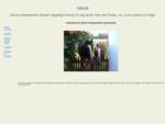 Søholt hestepension tilbyder hyggelige forhold for dig og din hest ved Strøby, ca. 10 km sydøst fo