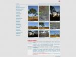 Галерея рисунков карандашом и фотографий городов мира - Совещательный арт