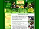 Детский лагерь в Подмосковье. Каникулы в детском языковом лагере ОтдыхEnglish
