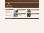 Stadnina koni Malinka, nauka jazdy konnej, jazda konna w terenie Skoczów Pogórze