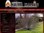 Rivestimenti termocamini forni e stufe - Starkamin. it | Starkamin S. r. l.
