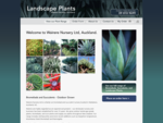 Wairere Nursery Ltd, Auckland Hardy, outdoor grown plants. We stock Bromeliads, Succulents, Aga