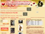 Darmowy Serwis Randkowy, Randki, Darmowy Portal Randkowy, Serwis Randkowy Za Darmo, Darmowe Rand