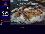 Frozen seafood from Greece Anemotrata Superfish SA George Kesoglidis Sterios Hatzopoulos Ioannis ...