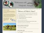 Körlektioner med häst samt häst vagn på Gotland - Elebjörks Svängel