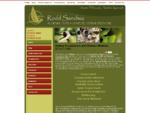 Acupuncture Sydney | Acupuncture Chinese Medicine | Acupuncturist Sydney