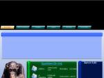 Systemtecno-Assemblaggio Assistenza Computer, Creazione Siti Web