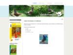Hubbel Fleischtauben - Mast, Zucht, Leistung Wirtschaftlichkeit - Fachliteratur - Hubbel Fleis