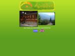 Αριάδνη-Παραδοσιακή Ταβέρνα-Δίον-Όλυμπος