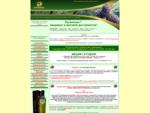 Здоровый образ жизни - КЕДР Кедровое масло, кедровый орех, аппликатор (кедровая жвачка), масло ке