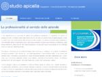 Ingegneria Consulenze Formazione | Studio Apicella a Cmare di Stabia - Napoli