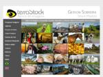 Banco de Imagens Terrastock - Gerson Sobreira Fotografia