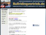 GS - Bullriding kaufen beim Direktvertrieb in Deutschland - GS - Bullriding Simulatoren kaufen, mie