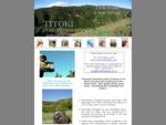 Driven Pheasant shooting hunting Titoki New Zealand -