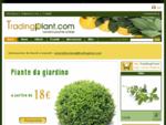 Vendita Online Piante Giardinaggio Vivaio » TradingPlant Agrumi Olivo Frutti » Sicilia » Italia