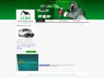 Traitement bois et traitement charpente termites, capricornes, grosse vrillette - Groupe LCHH