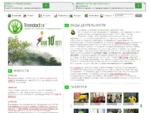 Арбористика, интегрированный менеджмент деревьев, кустарников и лиан, лечение деревьев, озеленен