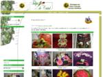 Florista Tulipa de Cristal - Mem Martins