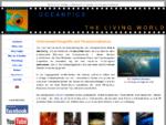 Unterwasserfotografie von Claus Peter Stoll, Udo Kefrig und Rose Jones