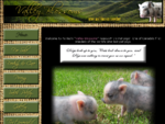 Micro Pigs Canada