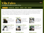 Vila Falco | A World of Excellence in Birds of Prey