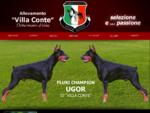 Allevamento dobermann di Villa Conte a Vedelago - Treviso. Allevamento riconosciuto AIAD - ENCI - ...