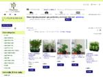 Vitaflora medelyno parduotuvė internete augalai su pristatymu į namus