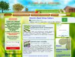 Сад и огород. Выращивание рассады. Овощи и фрукты | В саду ли в огороде