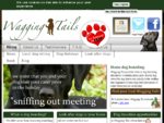 Family Run Dog Boarding | Wagging Tails UK | We look after any size of dog